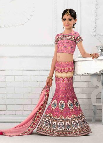 Pink Embroidered + Printed Lehenga Choli
