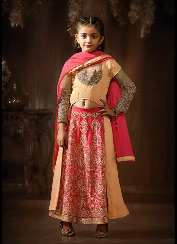 Pink and Beige Embroidered Lehenga