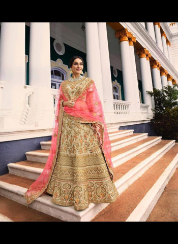 Cream and Gold Heavy Embroidered Lehenga