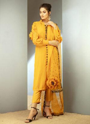 Yellow sundew